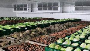 cámara de refrigeración para verduras
